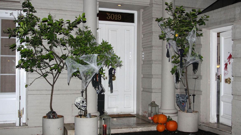 La casa de Marcela Tynaire