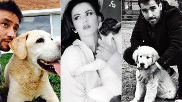 Los famosos celebraron el Día del animal